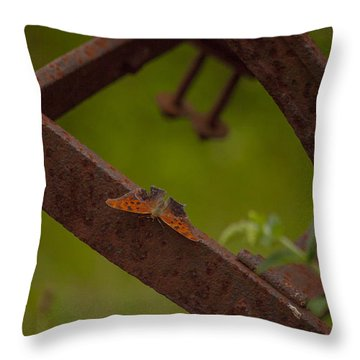 A Butterflys Resting Place Throw Pillow by Karol Livote