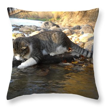 A Cat Goes Fishing Throw Pillow by Kent Lorentzen