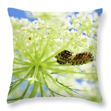 A Caterpillars Palace Throw Pillow