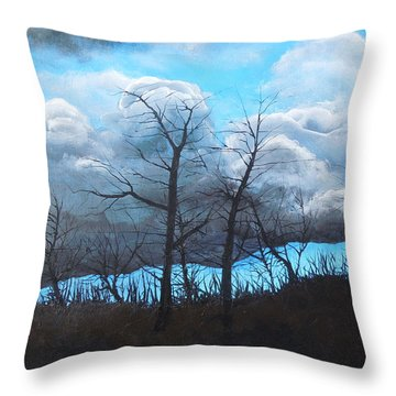 Throw Pillow featuring the painting A Cloudy Day by Dan Whittemore