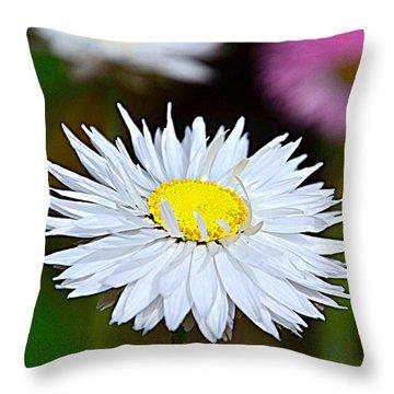 A Daisy Throw Pillow by Martina Fagan