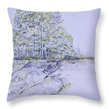 A Day In Central Park Throw Pillow