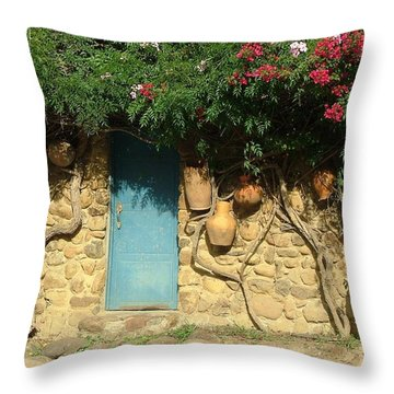 A Day In Colombia Throw Pillow