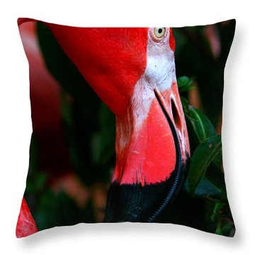 Throw Pillow featuring the photograph A Delicate Shade Of Power by Lon Casler Bixby