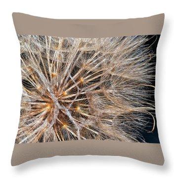 A Delicate World Throw Pillow by Steve Harrington
