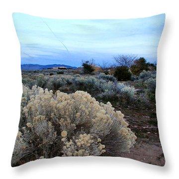 A Desert View After Sunset Throw Pillow by Kathleen Grace