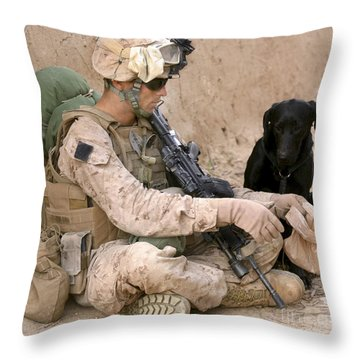 A Dog Handler Gives Water To His Dog Throw Pillow by Stocktrek Images