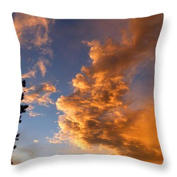 A Dramatic Summer Evening 1 Throw Pillow by Will Borden