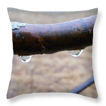 A Drippy Day Dawns Throw Pillow by Kent Lorentzen