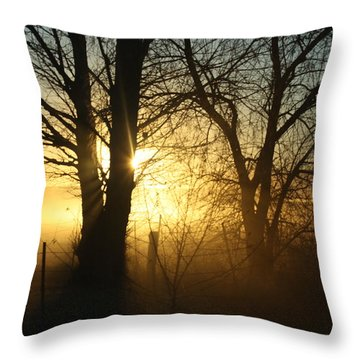 A Dusty Sunset Throw Pillow