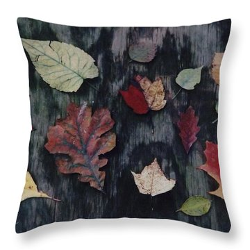 A Fall Of Color Throw Pillow by Gerald Strine