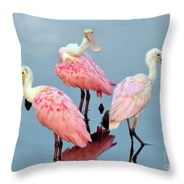 Throw Pillow featuring the photograph A Family Gathering by Kathy Baccari