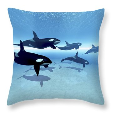 A Family Of Killer Whales Search Throw Pillow by Corey Ford