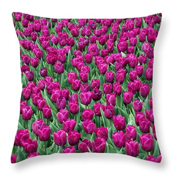 Throw Pillow featuring the photograph A Field Of Tulips by Eva Kaufman