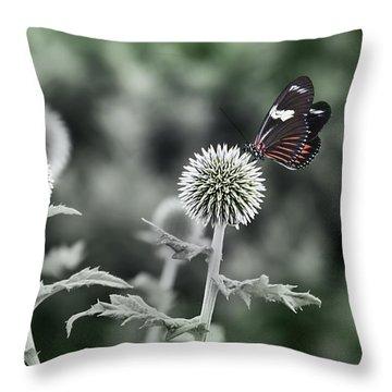 A Flight Of Fancy Throw Pillow