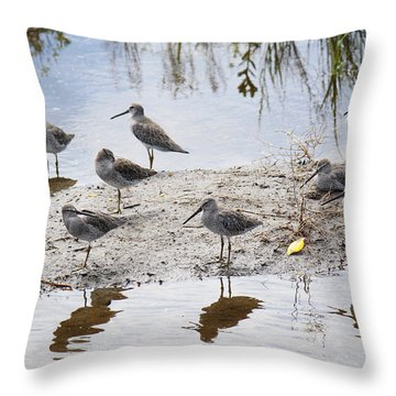 A Fling Of Long Billed Dowitchers Throw Pillow by Roena King