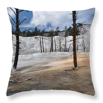 A Flower Blooms In Mammoth Hot Springs Throw Pillow