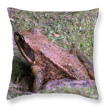 Throw Pillow featuring the photograph A Friendly Frog by Chalet Roome-Rigdon