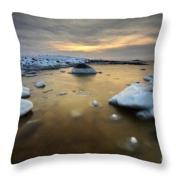A Frozen, Rusty Bay On Andoya Island Throw Pillow by Arild Heitmann