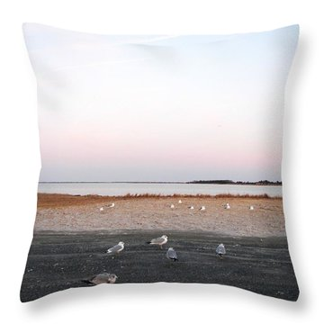 Throw Pillow featuring the photograph A Gathering On Rehoboth Bay by Pamela Hyde Wilson
