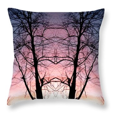 Throw Pillow featuring the photograph A Gift by Amy Sorrell