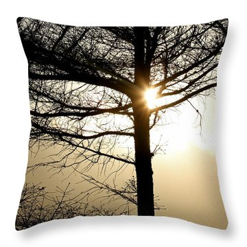 A Golden Day Throw Pillow by Marie Jamieson