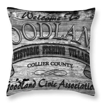 A Goodland Throw Pillow by David Lee Thompson