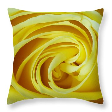 A Grandmother's Love Throw Pillow