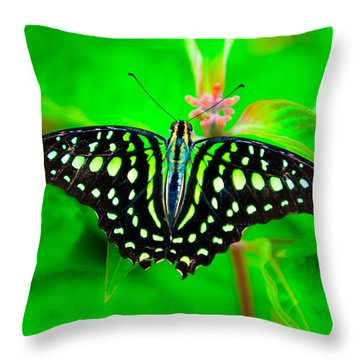 Throw Pillow featuring the photograph A Green Butterfly by Dennis Dame