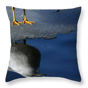 A Gull Reflects Throw Pillow by Karol Livote