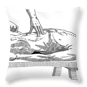 A Handbook Of Morbid Anatomy Throw Pillow by Science Source
