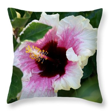 A Hibiscus Of A Different Kind Throw Pillow