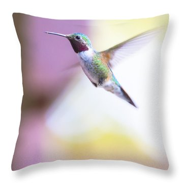 A Humming Bird In The Rocky Mountains Throw Pillow by Ellie Teramoto