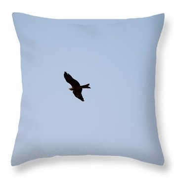 Throw Pillow featuring the photograph A Kite Flying High In The Sky by Ashish Agarwal