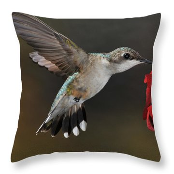 A Lady At Lunch Throw Pillow
