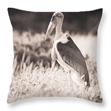 A Large Bird Stands In The Grass Throw Pillow by David DuChemin