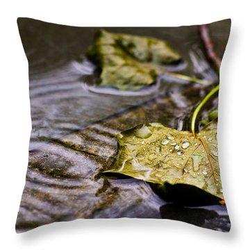A Leaf In The Rain Throw Pillow