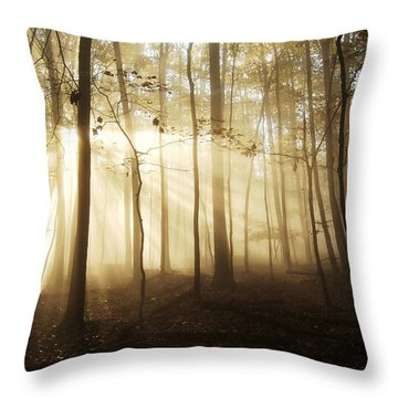 A Light In The Forest Throw Pillow by Wade Aiken
