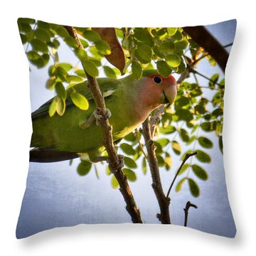 A Little Love  Throw Pillow