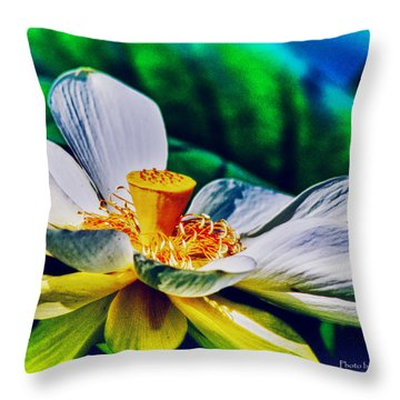 A Lotus Brightly Throw Pillow by Travis Burgess