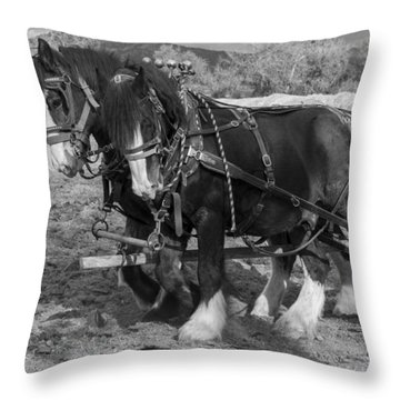 A Pair Of Shire Horses Throw Pillow by Fran Riley
