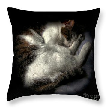 A Patch Of Sun 2 Throw Pillow