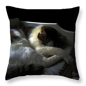 A Patch Of Sun Throw Pillow