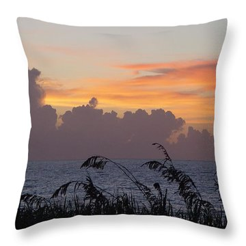A Perfect Morning Throw Pillow