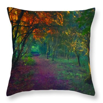 Throw Pillow featuring the painting A Place Of Mystery by Joe Misrasi