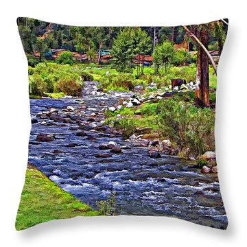 A Place Without Time Throw Pillow by Steve Harrington