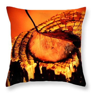 Throw Pillow featuring the photograph A Pose For Fall by Jessica Shelton