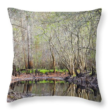 A Quiet Back Woods Place Throw Pillow by Carolyn Marshall