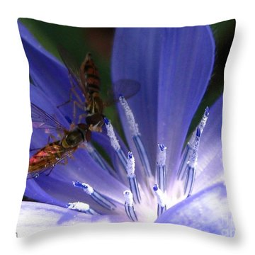 A Quiet Moment On The Chicory Throw Pillow by J McCombie