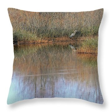 A Quiet Place  Throw Pillow by Pamela Patch
